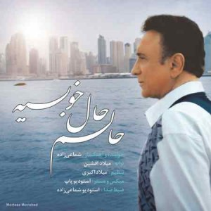 Hassan Shamaizadeh - Halam Hale Khobie
