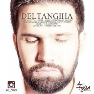 ali-zibaee-deltangiha-450x450