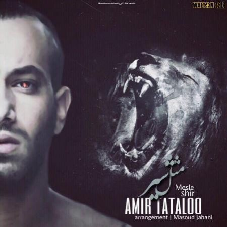Amir-Tataloo-Mesle-Shir-450x449